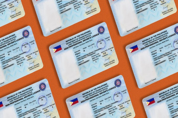 The driver's license is the most important document you would need