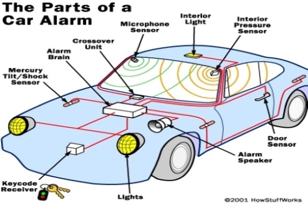A car alarm's components